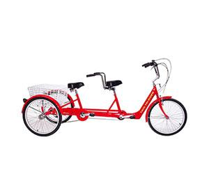 Tandem Tri Bike
